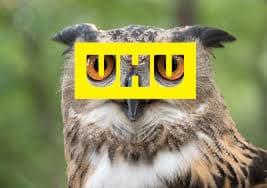 Glue Review UHU Eagle Owl