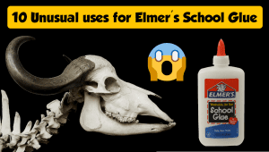 Unusual uses for Elmer's glue